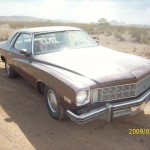1975 Buick Special (75BU7062D)