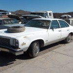 1976 Buick Century (76BU3768D)